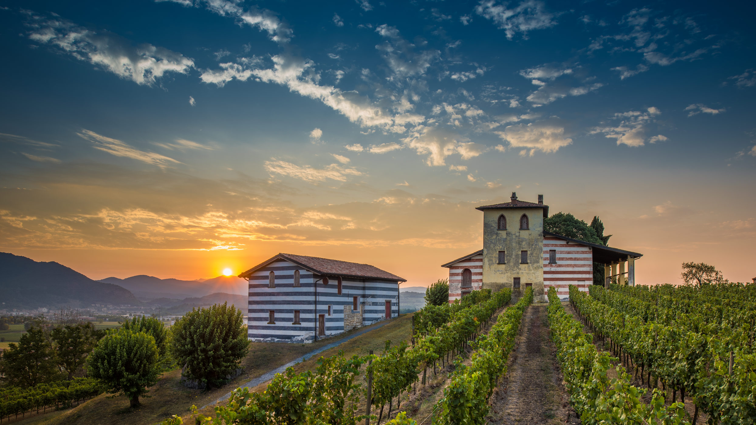 Berlucchi wineries, Franciacorta, Italy.